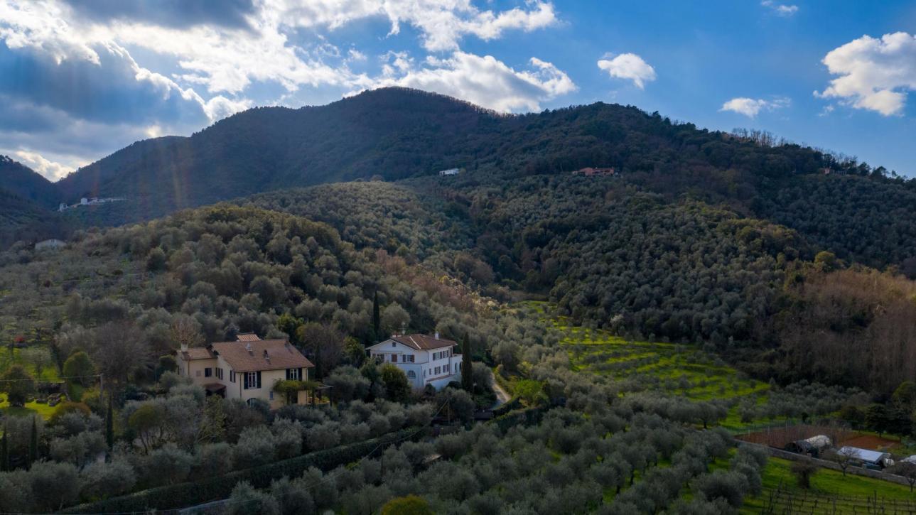 Charming villa on hills